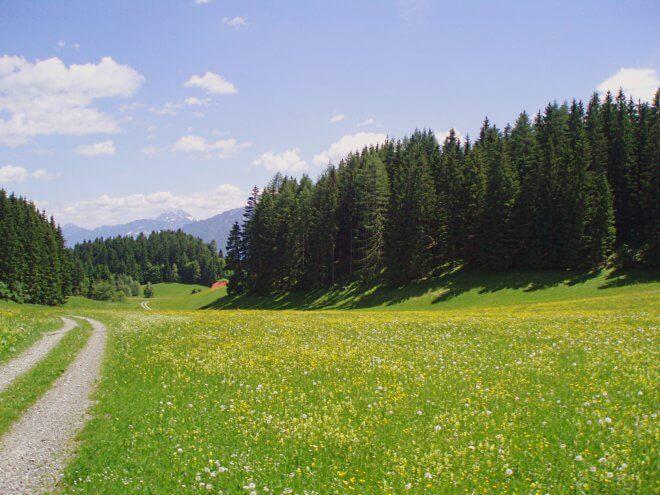 Ferienhaus Maar1 am Goldberg - Maarfeld, Blick Richtung Osten