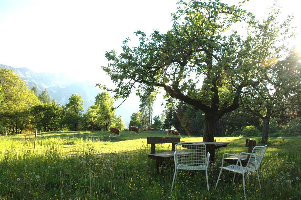 Ferienhaus Maar1 am Goldberg - Blick Richtung Süden